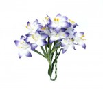 SCB290402 ScarpBerrys Blomster, Stammed Lily, White & Blue-0