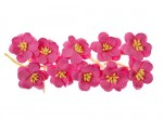 SCB300205 ScarpBerrys Blomster, Cherry Blossom, Bright-Pink-0