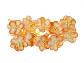 SCB300203 ScarpBerrys Blomster, Cherry Blossom, Peach-Creme-0