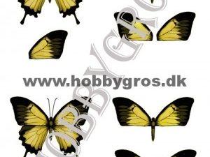 066511 Lene Design 3D 1 ark Gul sommerfugl-0