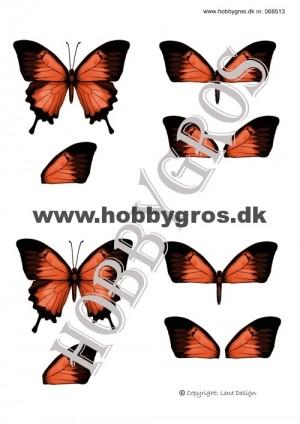 066513 Lene Design 3D 1 ark orange sommerfugl-0