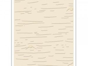 662431 Sizzix Tim Holtz Embossing Folder Birch-0