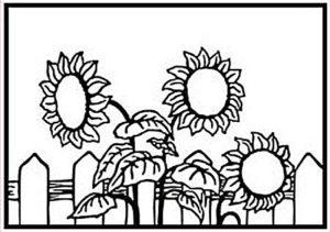 HSF026 Nellie Snellen Hobby Solution Emb.folder Sunflowers-0