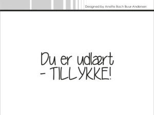 "SBC024 Simple and Basic Stempel ""Dansk Tekst"" Du er udlært - TILLYKKE-0"