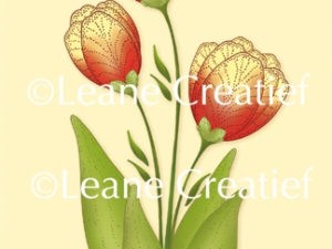 55.5732 Leane Creatief stempel/clearstamp Tulip 3D Flower-0