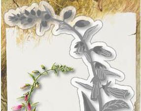 6002/1210 JOY Die Colouring Stencil Gnomelady Carries Flowers-0