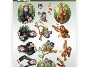 CD11299 Amy Design 3D 1 ark Wild Animals 2-0