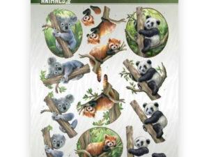 CD11300 Amy Design 3D 1 ark Wild Animals 2 -0