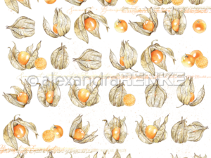 10.1351 Alexandra Renke Designpaper 30x30, Physalis-0
