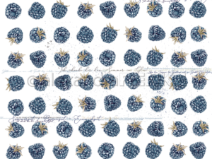 10.1355 Alexandra Renke Designpaper 30x30, Blackberries-0