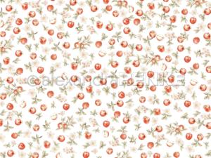 10.1357 Alexandra Renke Designpaper 30x30, Apple garden-0
