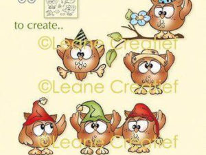 55.6029 Leane Creatief stempel/clearstamp Owly-0