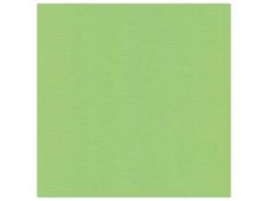 582021 Linnen Karton 30,5 x 30,5 cm, Spring Green-0