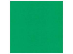 582022 Linnen Karton 30,5 x 30,5 cm, Green-0