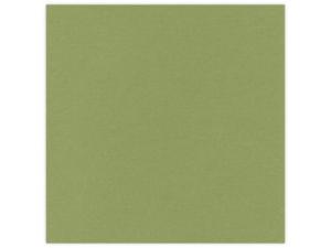 582046 Linnen Karton 30,5 x 30,5 cm, Olive Green-0